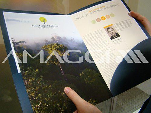 Em 2012 foi a única empresa brasileira em seu setor a figurar no relatório anual do Forest Footprint Disclosure (FFD).